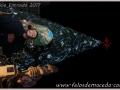 20170107_inicio_entroido_felos_022